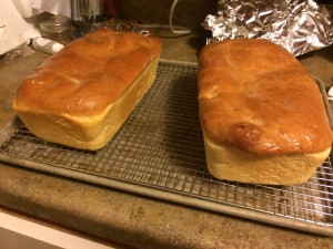 Baked bread cooling before being consumed.